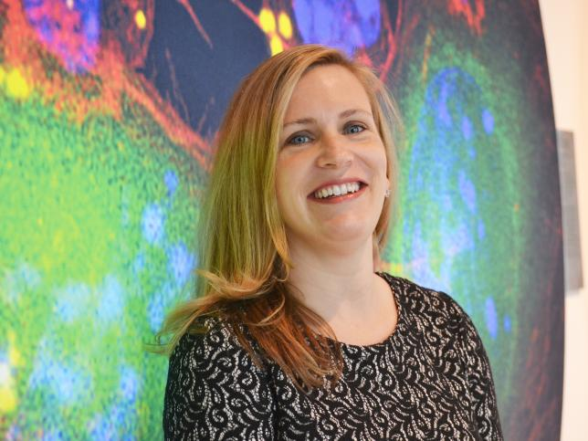 CPCM member Angela Koehler receives MIT's Junior Bose Award for Teaching Excellence and NSF's Career Award.
